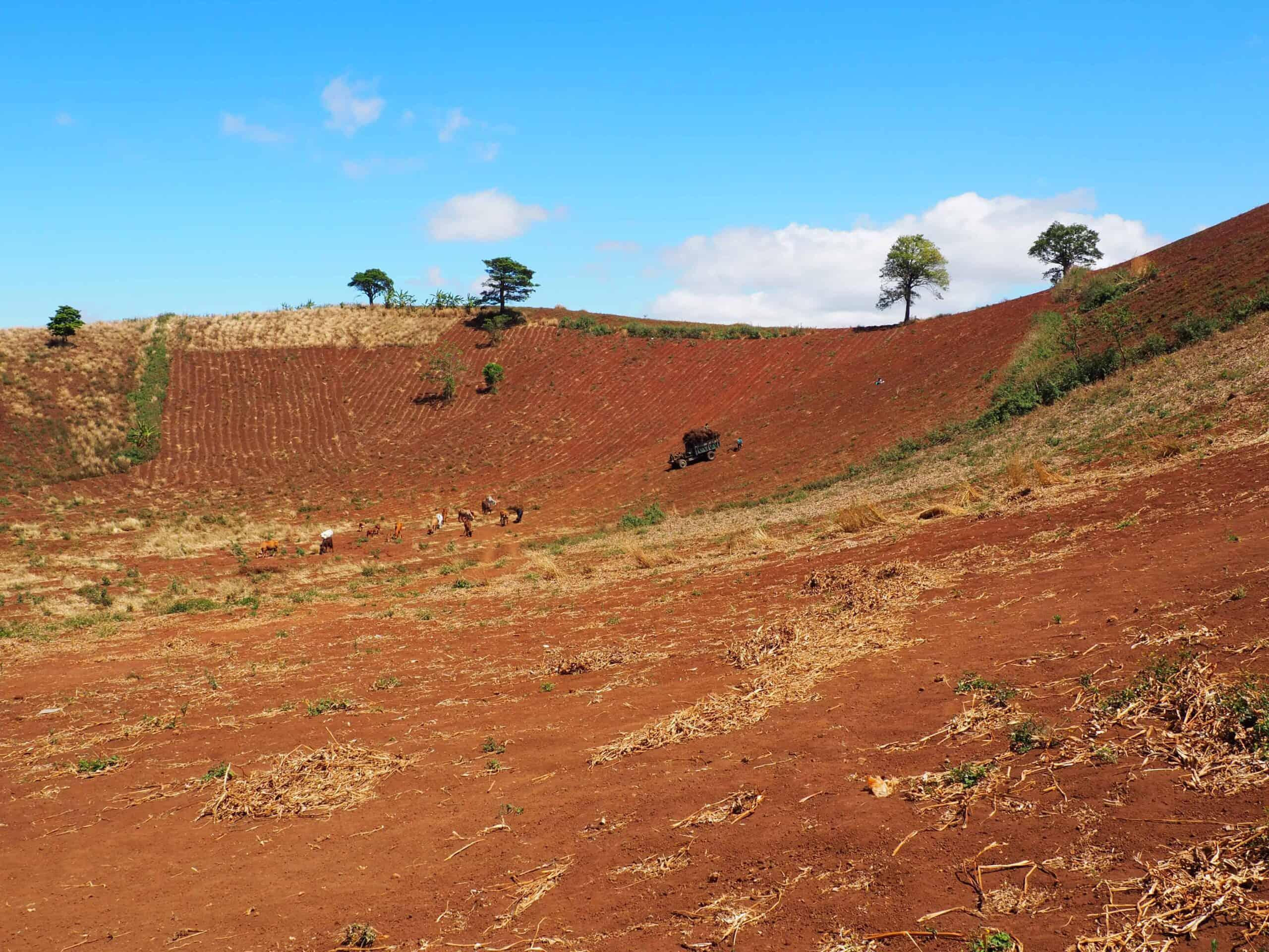 Đỉnh Chư Nâm - Pleiku kuva 2